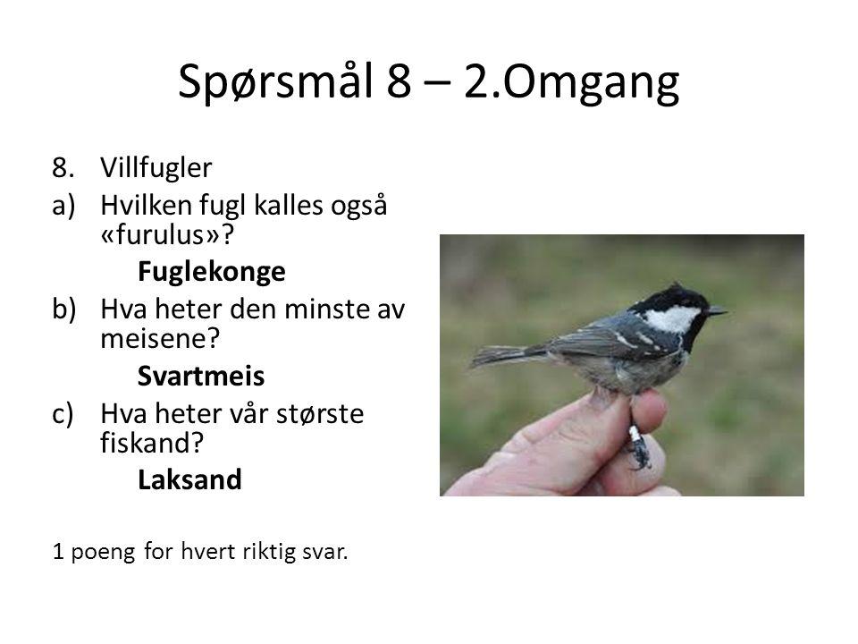 Spørsmål 8 – 2.Omgang Villfugler Hvilken fugl kalles også «furulus»