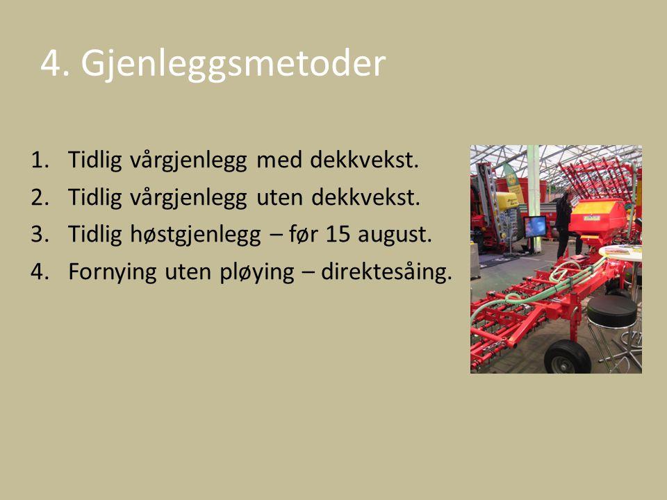 4. Gjenleggsmetoder Tidlig vårgjenlegg med dekkvekst.