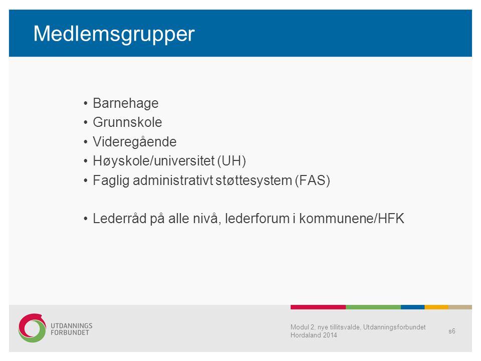 Medlemsgrupper Barnehage Grunnskole Videregående