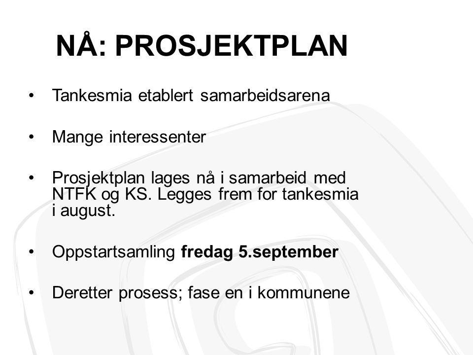 NÅ: PROSJEKTPLAN Tankesmia etablert samarbeidsarena