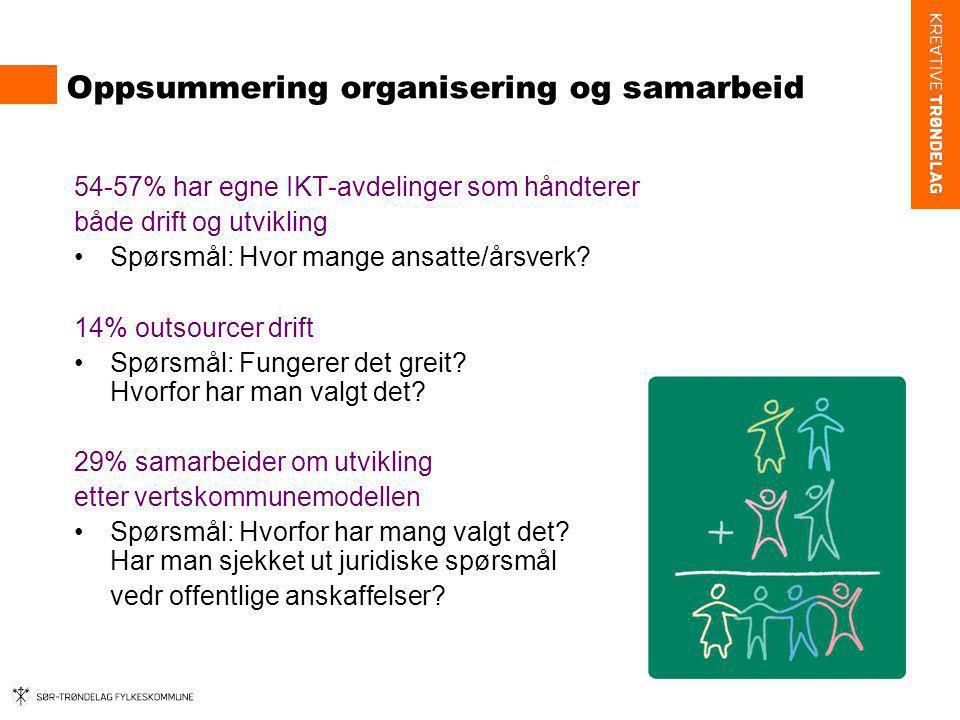 Oppsummering organisering og samarbeid