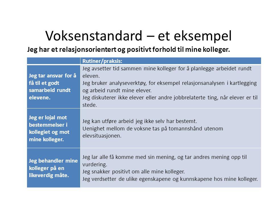 Voksenstandard – et eksempel