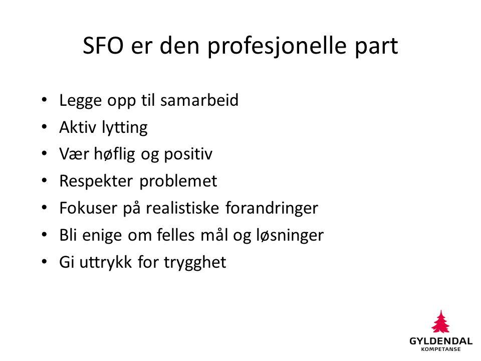 SFO er den profesjonelle part