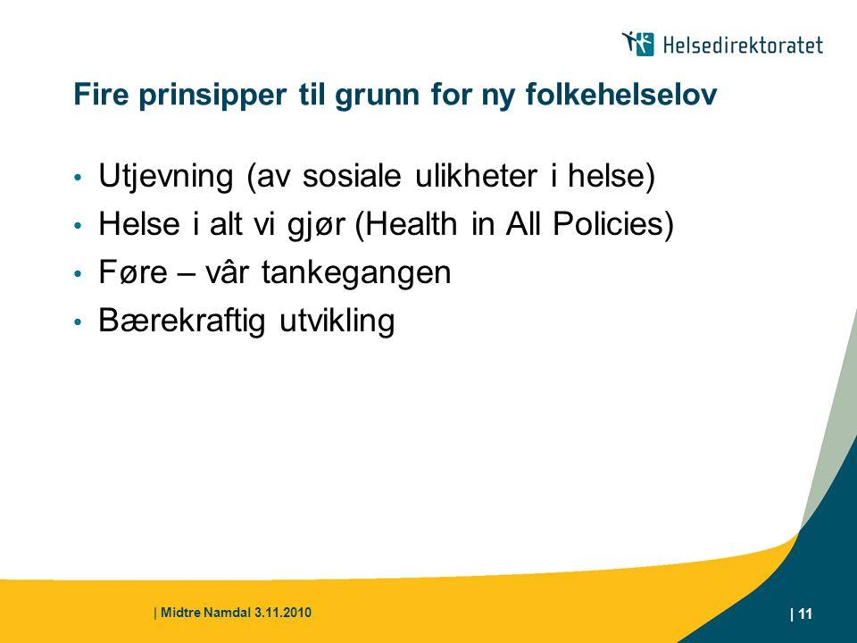 Fire prinsipper til grunn for ny folkehelselov