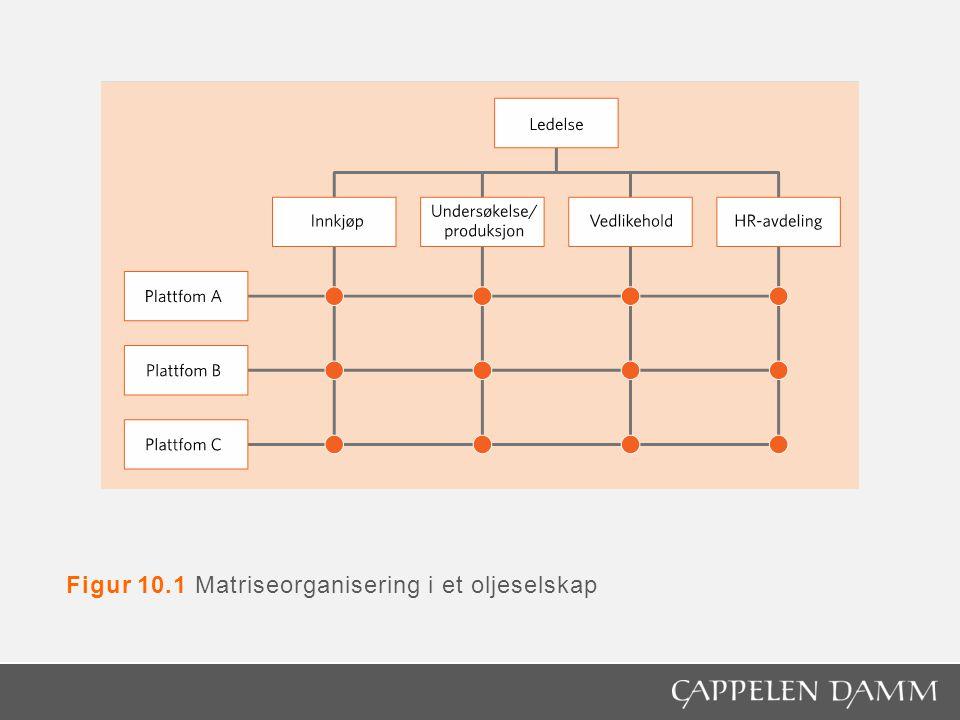 Figur 10.1 Matriseorganisering i et oljeselskap
