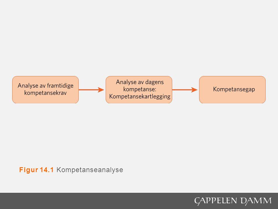 Figur 14.1 Kompetanseanalyse