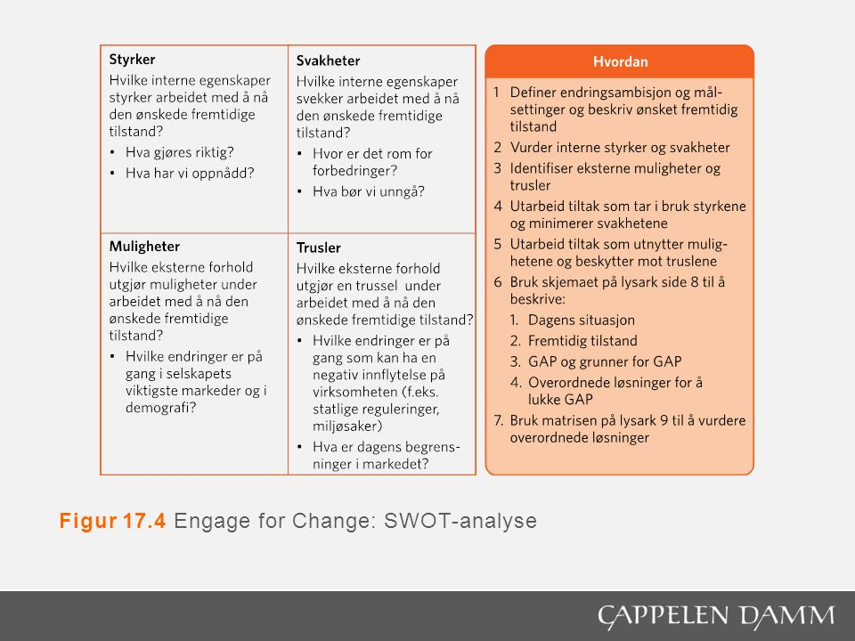 Figur 17.4 Engage for Change: SWOT-analyse