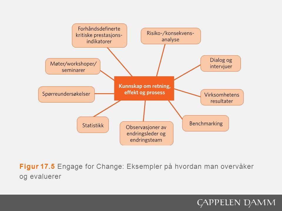 Figur 17.5 Engage for Change: Eksempler på hvordan man overvåker og evaluerer