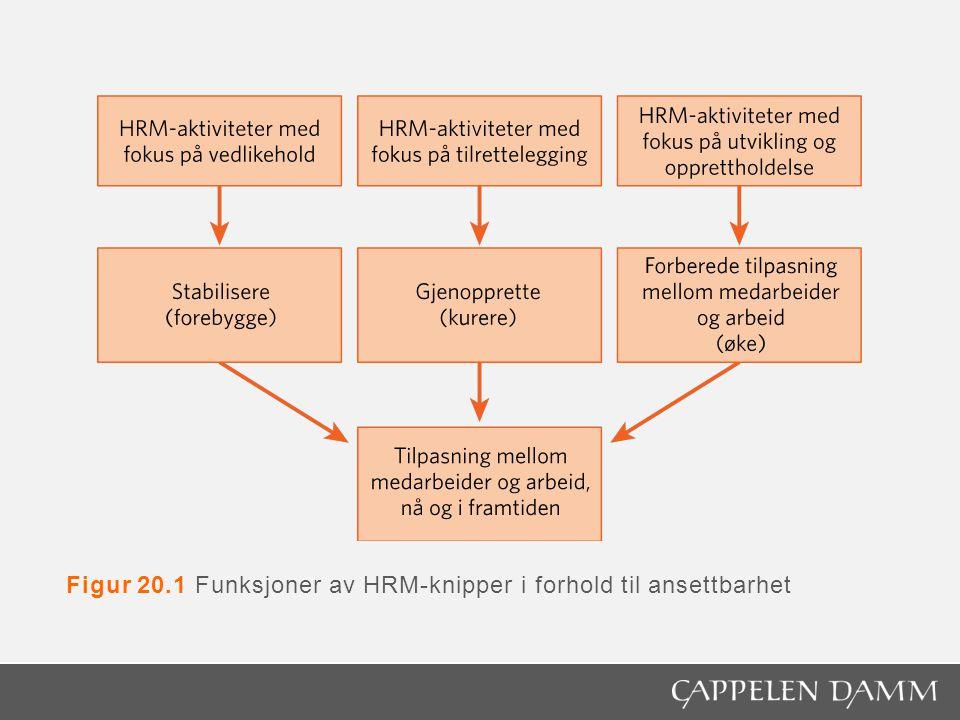 Figur 20.1 Funksjoner av HRM-knipper i forhold til ansettbarhet