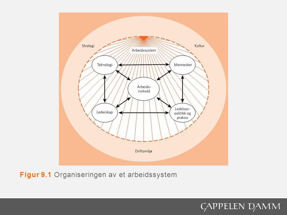 Figur 9.1 Organiseringen av et arbeidssystem