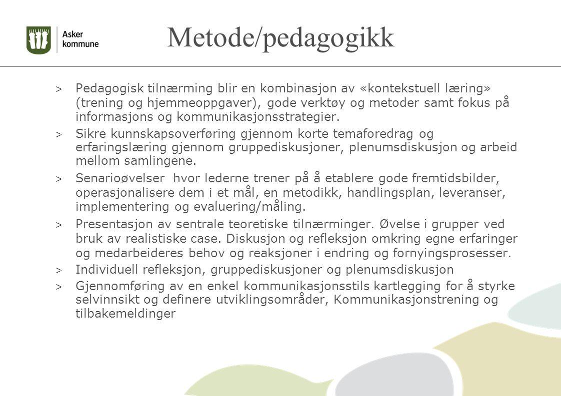 Metode/pedagogikk