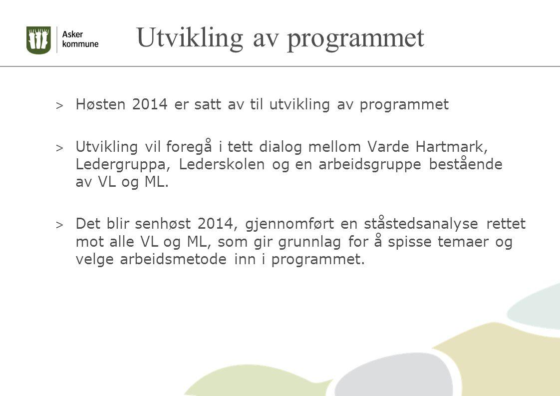 Utvikling av programmet