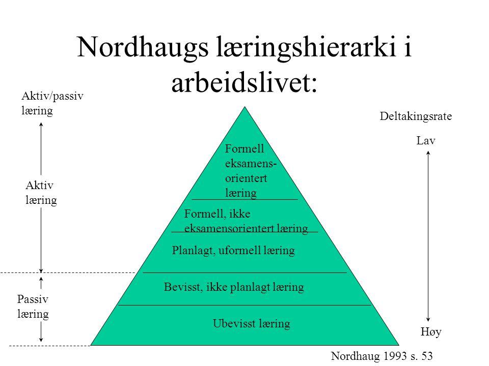 Nordhaugs læringshierarki i arbeidslivet: