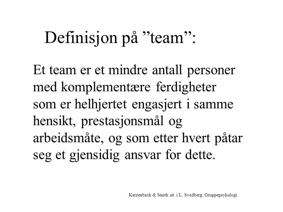Definisjon på team :