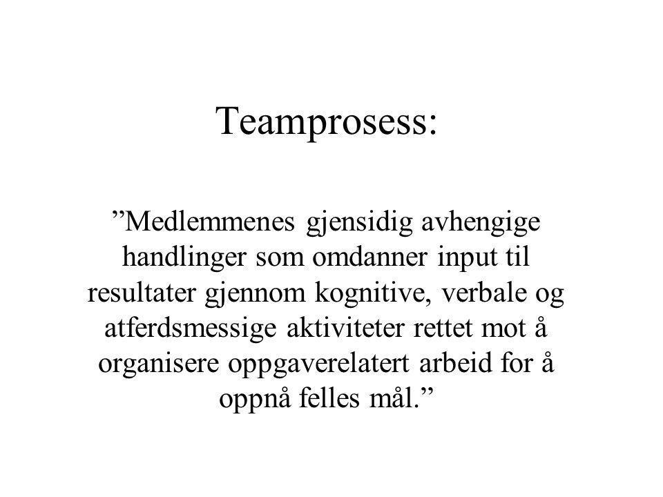 Teamprosess: