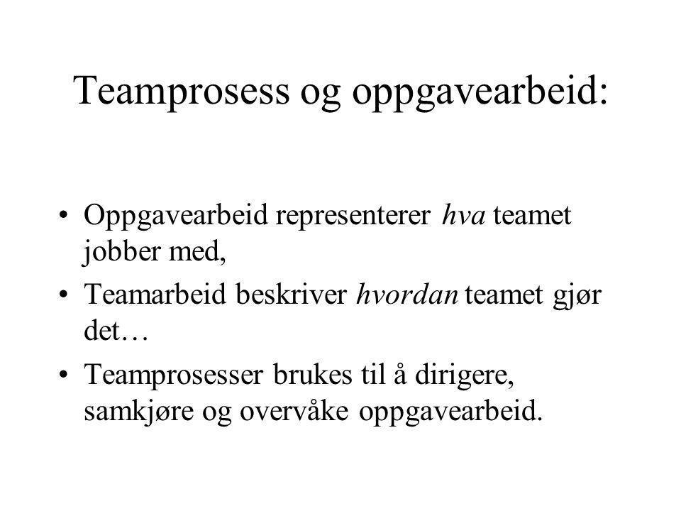 Teamprosess og oppgavearbeid: