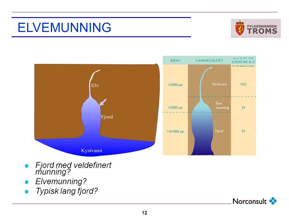 ELVEMUNNING Fjord med veldefinert munning Elvemunning