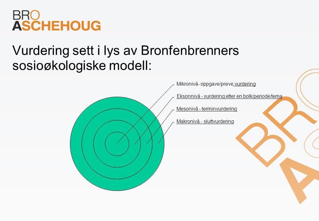 Vurdering sett i lys av Bronfenbrenners sosioøkologiske modell: