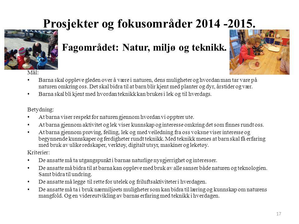 Prosjekter og fokusområder 2014 -2015.