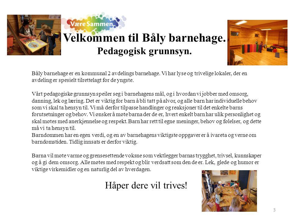 Velkommen til Båly barnehage. Pedagogisk grunnsyn.