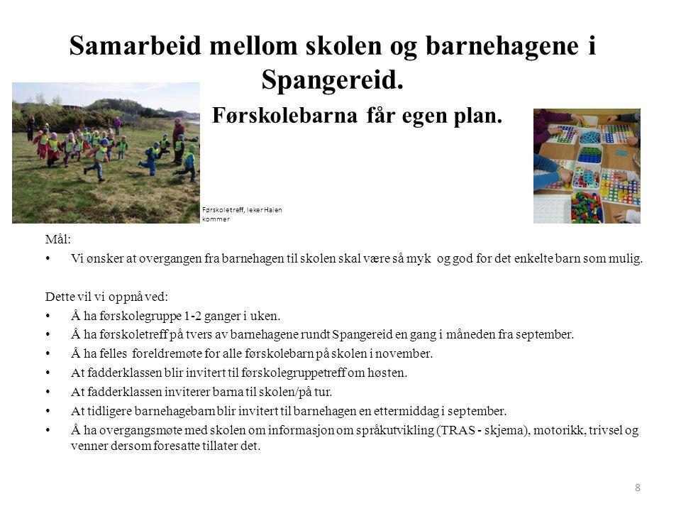Samarbeid mellom skolen og barnehagene i Spangereid