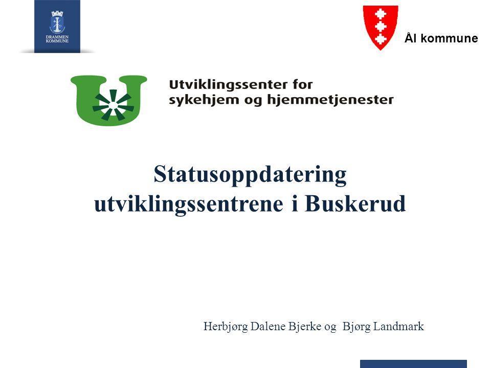 Statusoppdatering utviklingssentrene i Buskerud