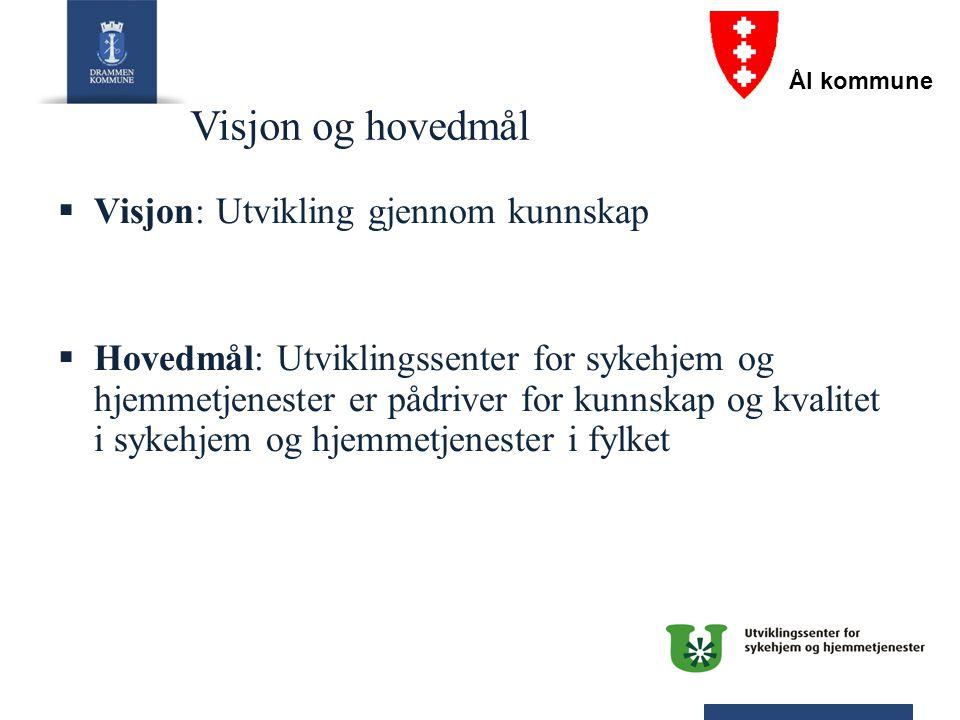 Visjon og hovedmål Visjon: Utvikling gjennom kunnskap