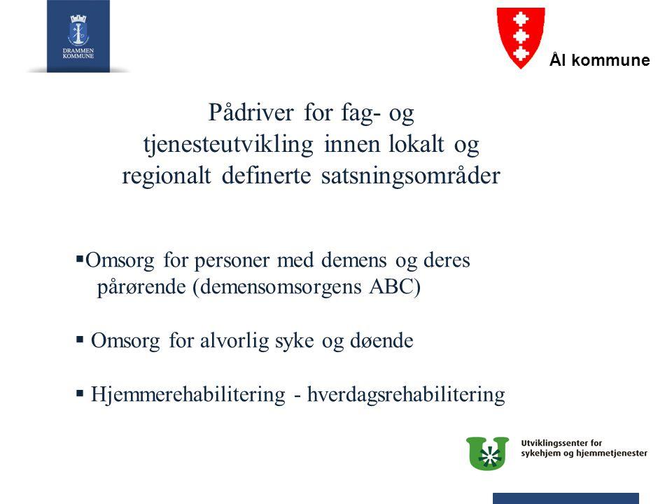 Pådriver for fag- og tjenesteutvikling innen lokalt og regionalt definerte satsningsområder