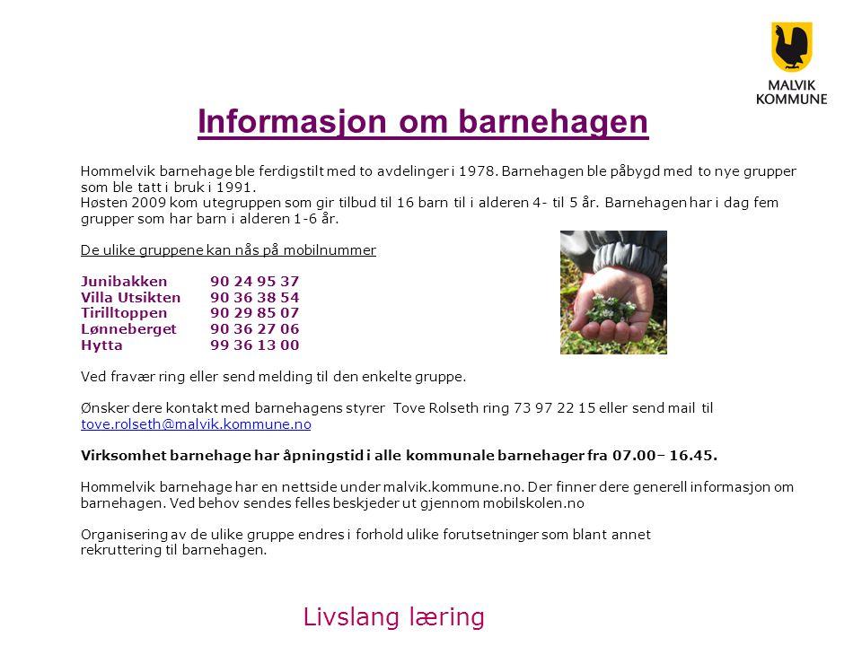 Informasjon om barnehagen