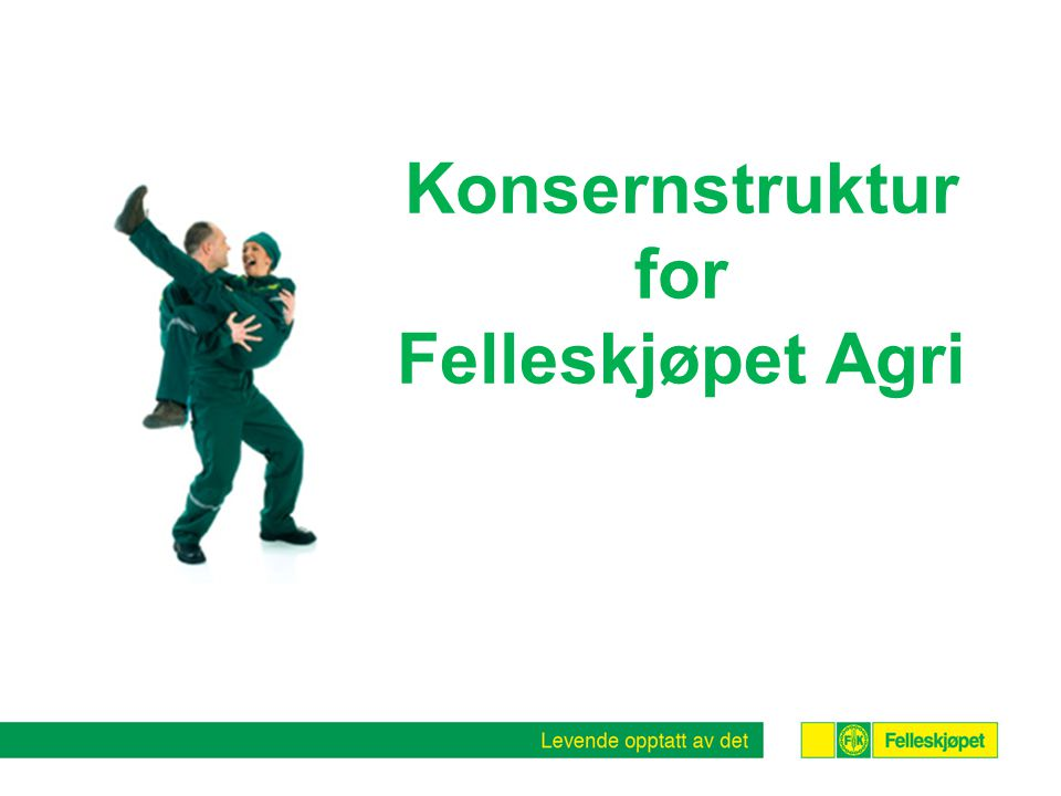 Konsernstruktur for Felleskjøpet Agri