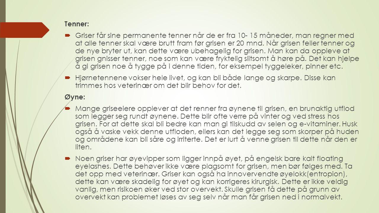 Tenner: