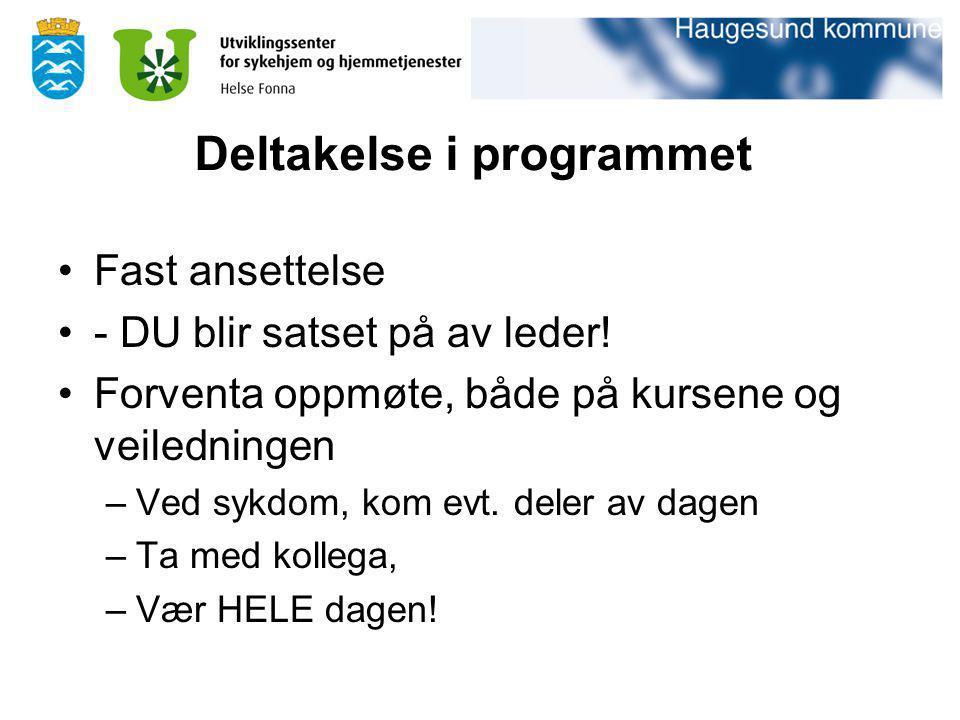 Deltakelse i programmet