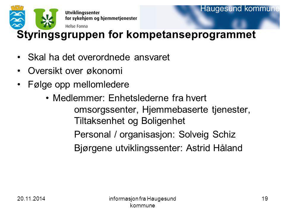 Styringsgruppen for kompetanseprogrammet