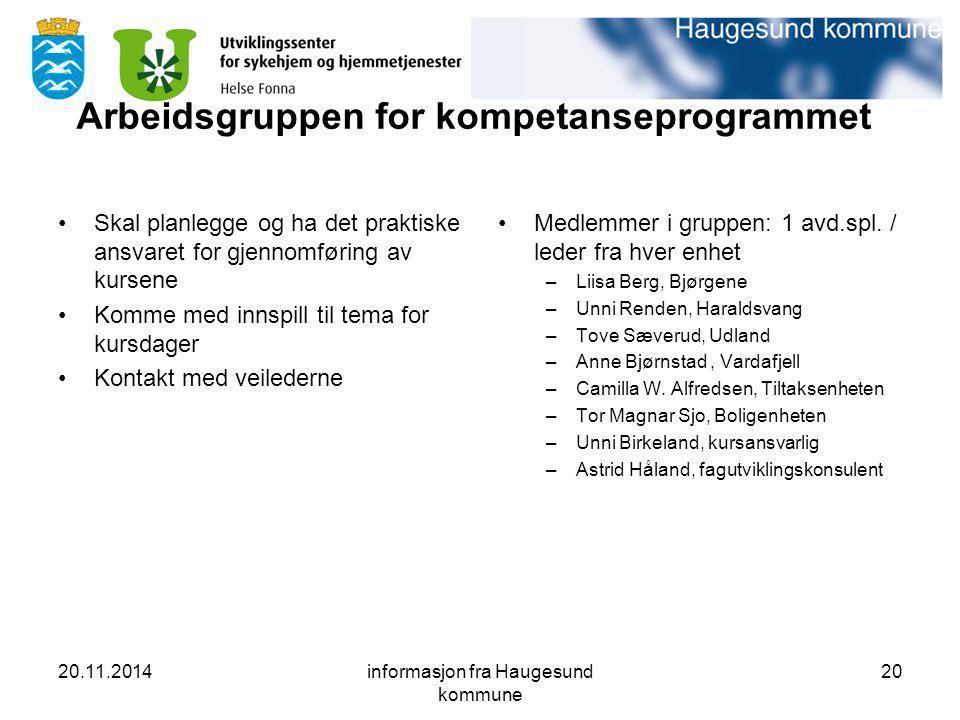 Arbeidsgruppen for kompetanseprogrammet