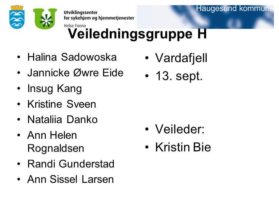 Veiledningsgruppe H Vardafjell 13. sept. Veileder: Kristin Bie