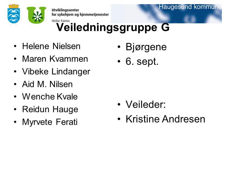 Veiledningsgruppe G Bjørgene 6. sept. Veileder: Kristine Andresen