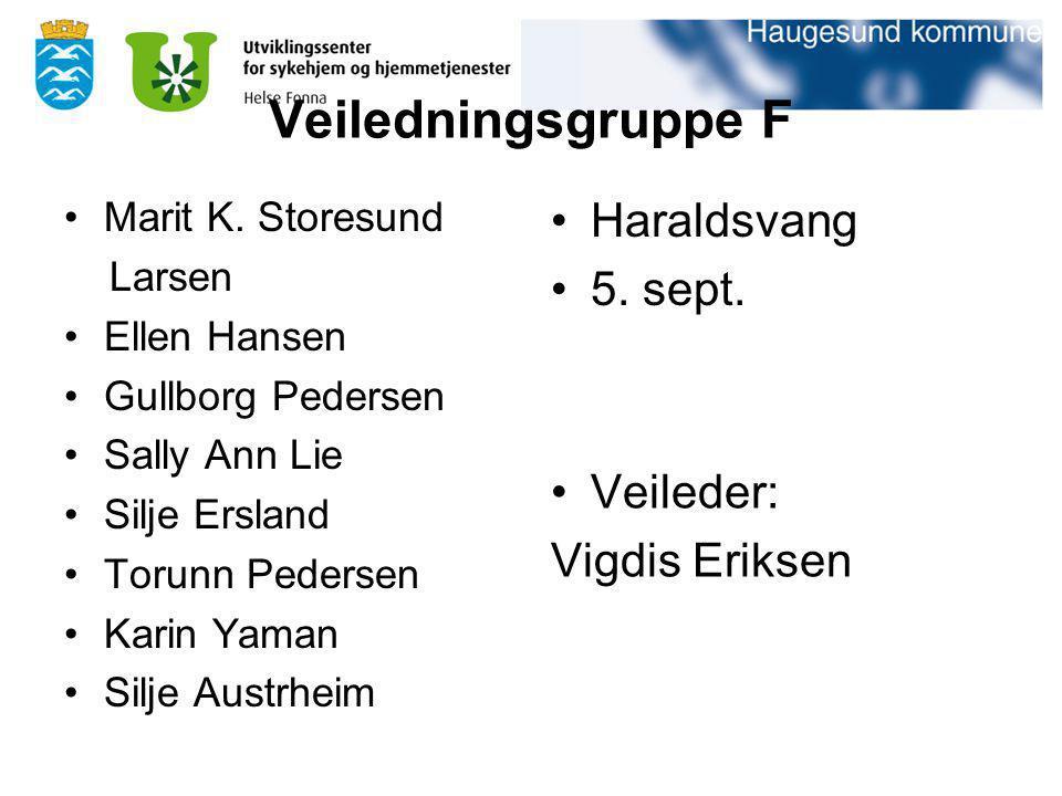 Veiledningsgruppe F Haraldsvang 5. sept. Veileder: Vigdis Eriksen