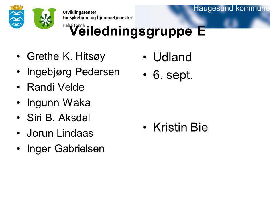 Veiledningsgruppe E Udland 6. sept. Kristin Bie Grethe K. Hitsøy