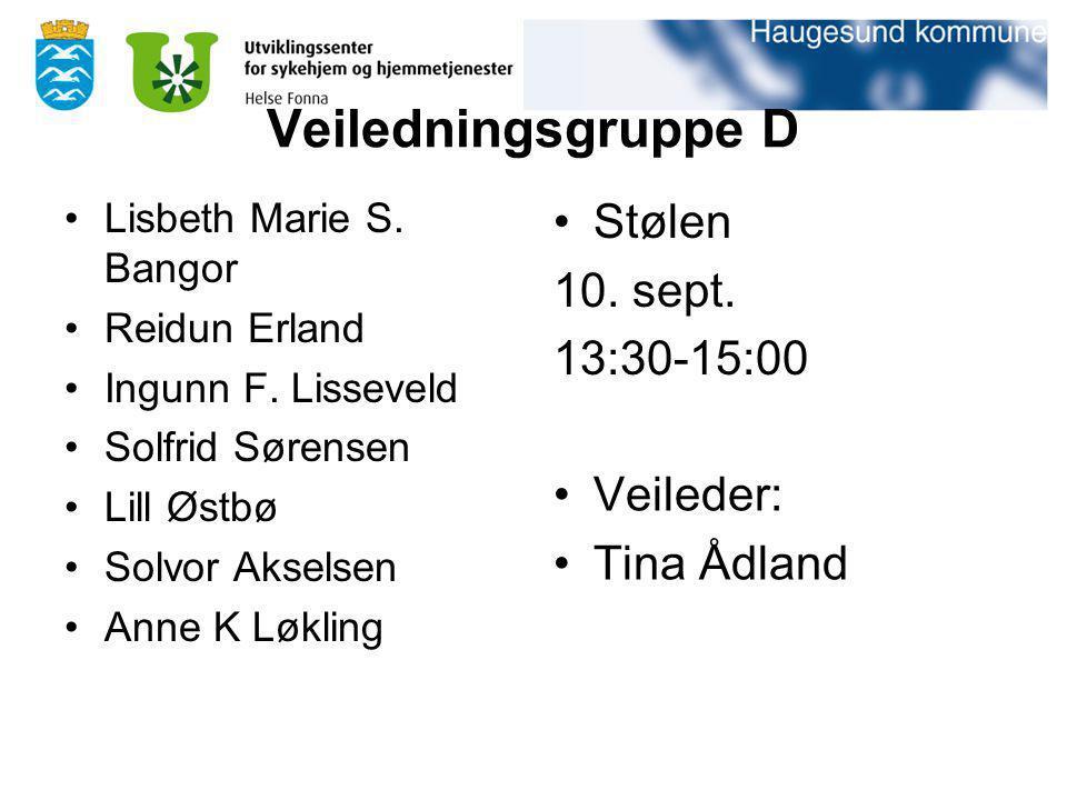 Veiledningsgruppe D Stølen 10. sept. 13:30-15:00 Veileder: Tina Ådland
