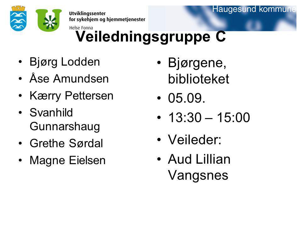 Veiledningsgruppe C Bjørgene, biblioteket 05.09. 13:30 – 15:00