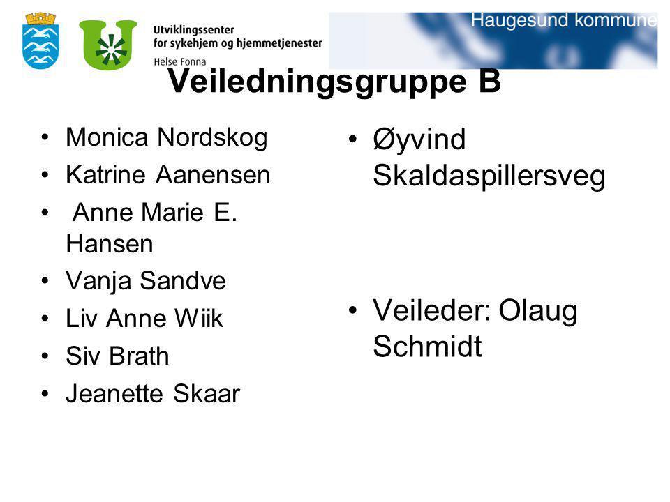 Veiledningsgruppe B Øyvind Skaldaspillersveg Veileder: Olaug Schmidt