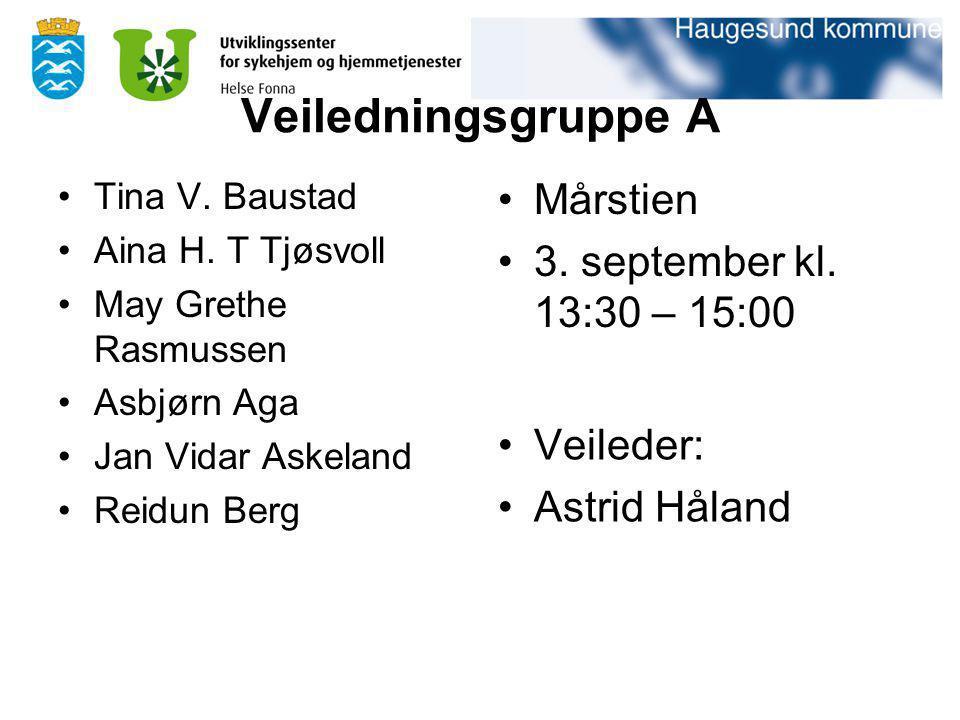 Veiledningsgruppe A Mårstien 3. september kl. 13:30 – 15:00 Veileder: