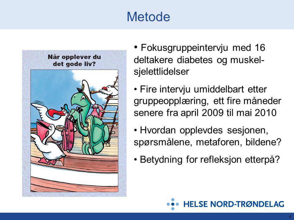 Metode Fokusgruppeintervju med 16 deltakere diabetes og muskel-sjelettlidelser.