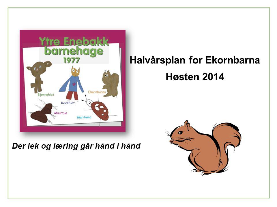 Halvårsplan for Ekornbarna Der lek og læring går hånd i hånd