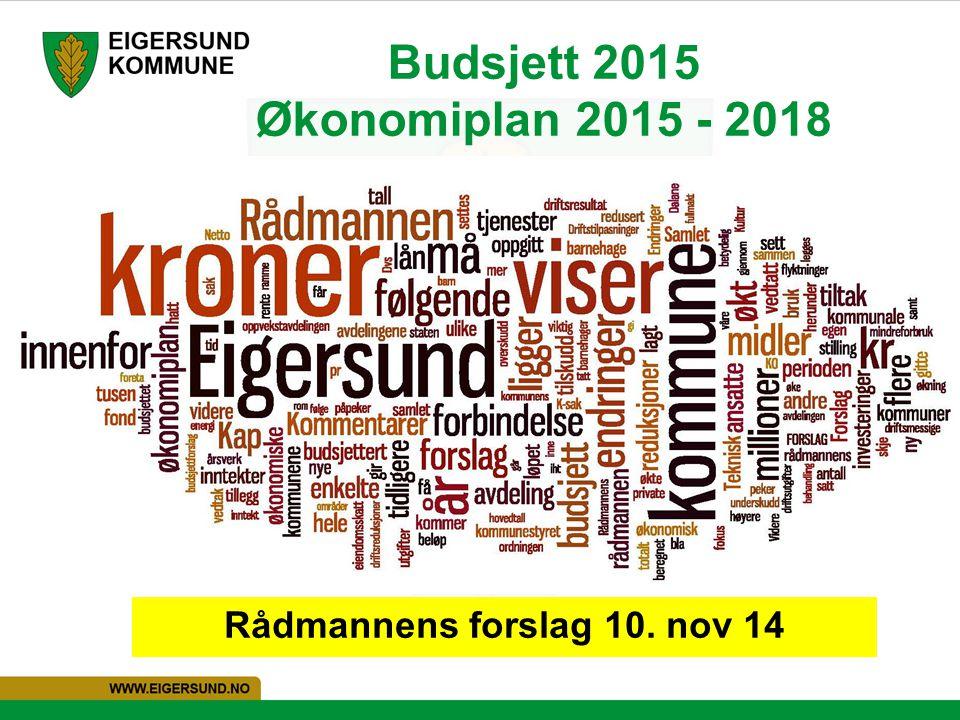 Budsjett 2015 Økonomiplan 2015 - 2018
