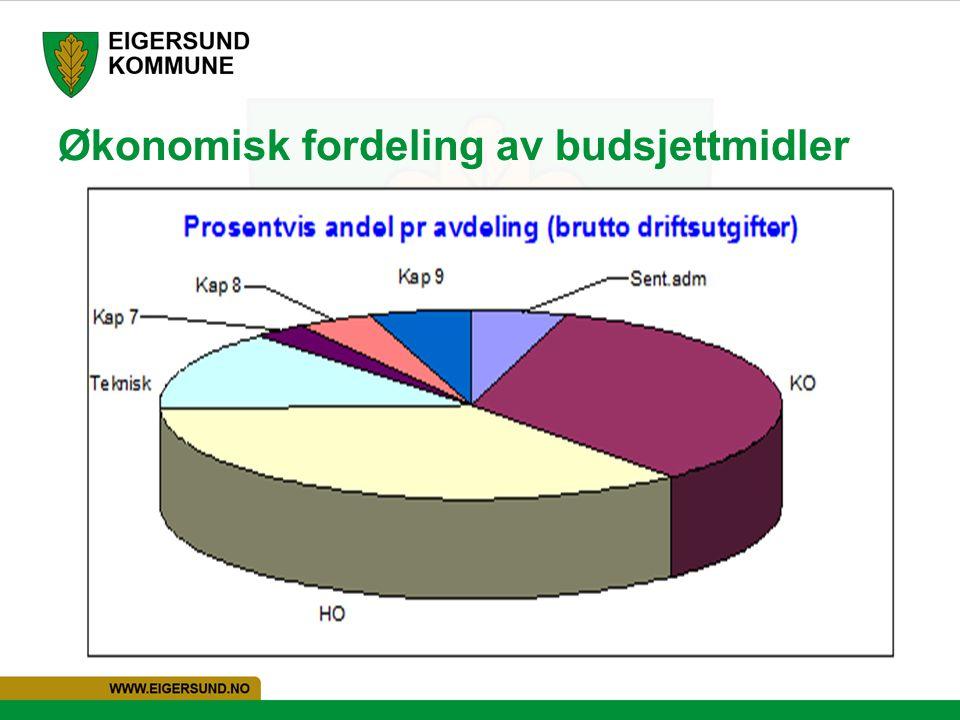 Økonomisk fordeling av budsjettmidler
