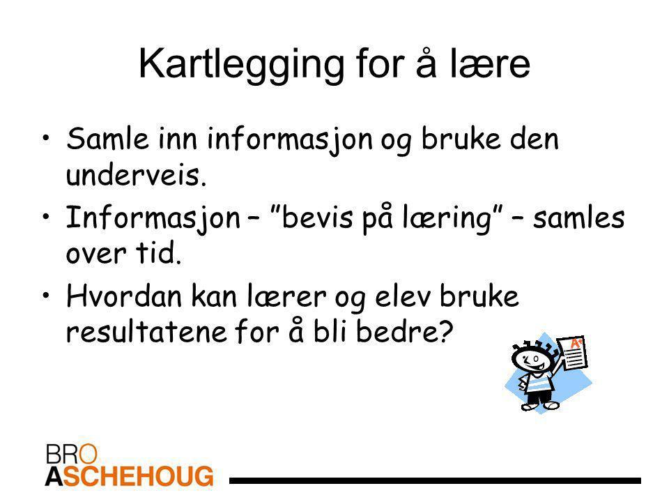 Kartlegging for å lære Samle inn informasjon og bruke den underveis.
