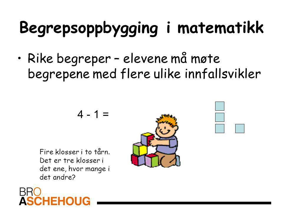 Begrepsoppbygging i matematikk