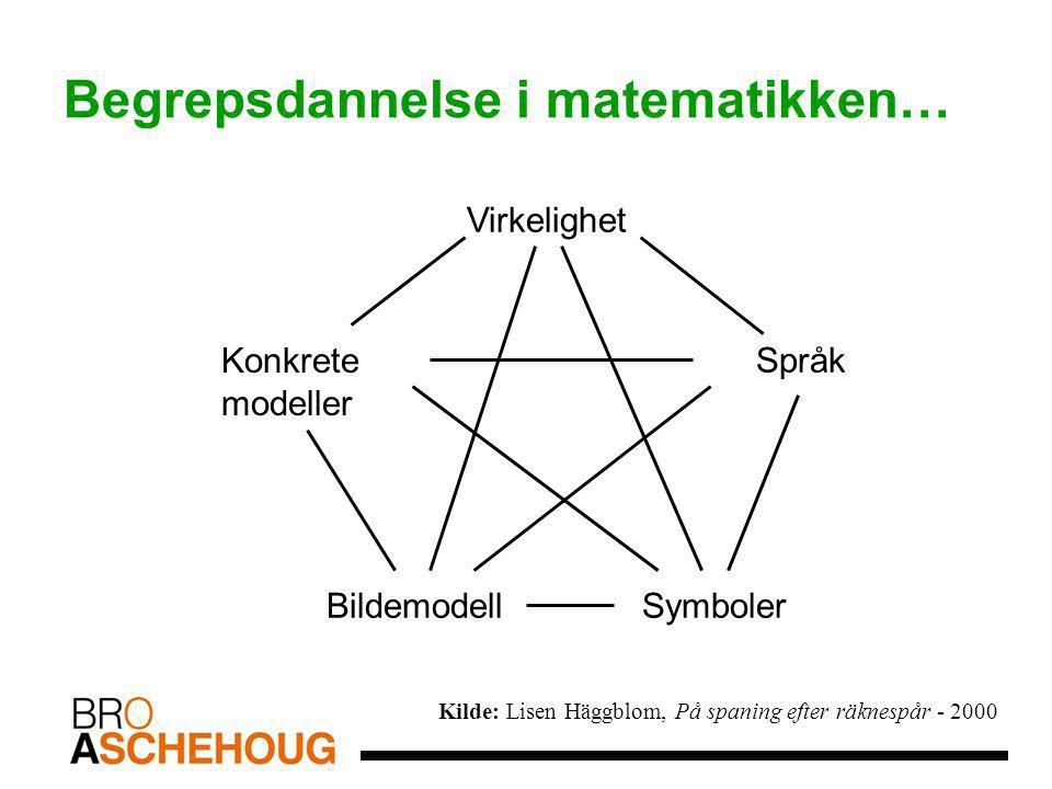 Begrepsdannelse i matematikken…
