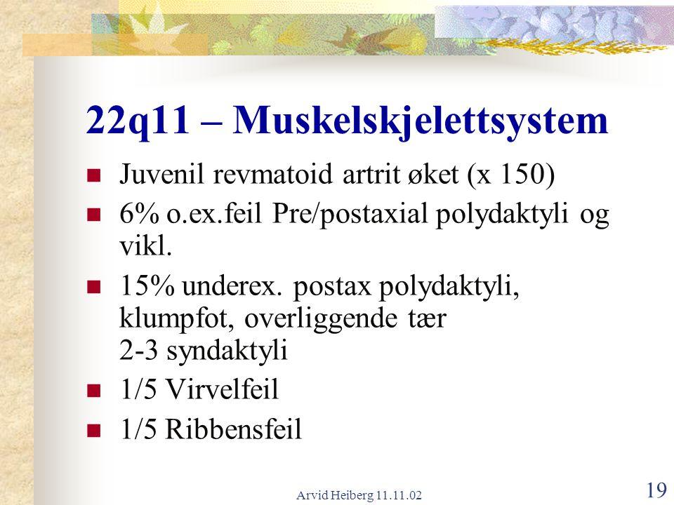 22q11 – Muskelskjelettsystem